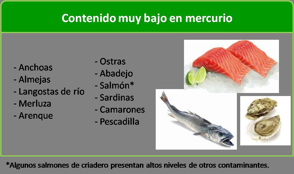 Durante el embarazo qu tipo de pescado se puede comer y cu l no para evitar la ingesta de - Alimentos no permitidos en el embarazo ...