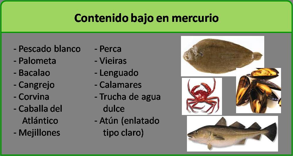 Durante el embarazo qu tipo de pescado se puede comer y for Tipos de jaulas para peces