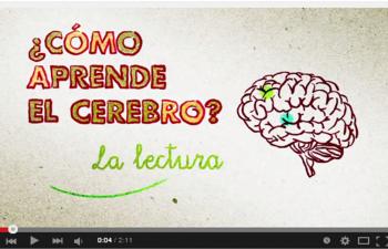 ¿Cómo aprende el cerebro? - La lectura