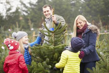 cfd088ff3 Ideas para disfrutar de una Navidad en familia. 10 12 2014