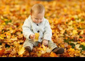Niño pequeño jugando con hojas en pleno otoño