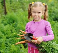 Nen en un hort