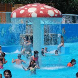 Las piscinas en verano un lugar ideal para la infecci n for Hongos de piscina